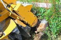 Houston tree stump grinding services